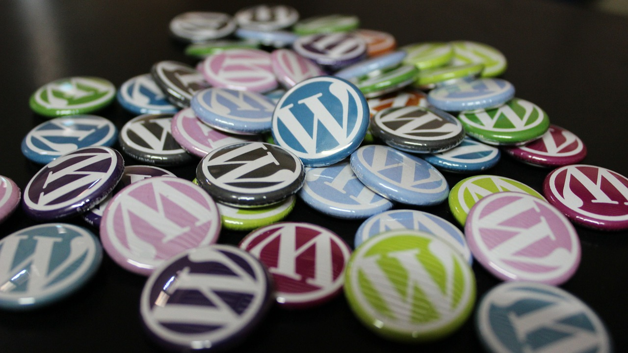 Absicherung Wordpress